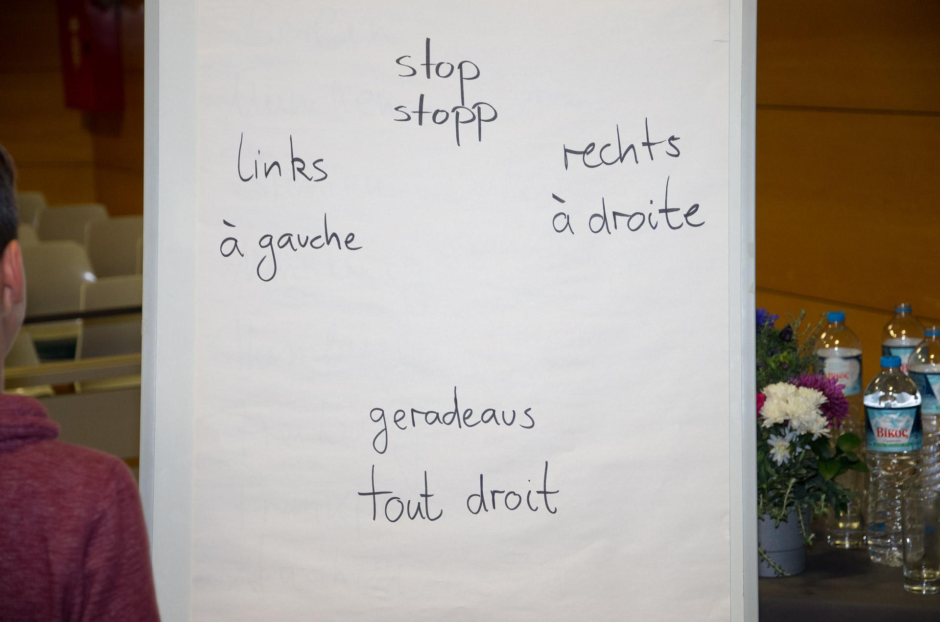 Journée de l'amitié franco-allemande : les élèves germanistes du LFHED rencontrent leurs partenaires de la Deutsche Schule Athen-9