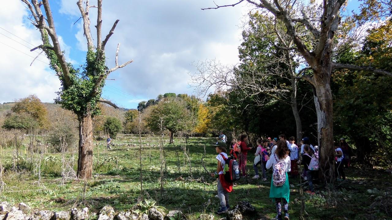 Camps d'automne 2018 : Découverte de la montagne et écotourisme à Karies Lakonias-2