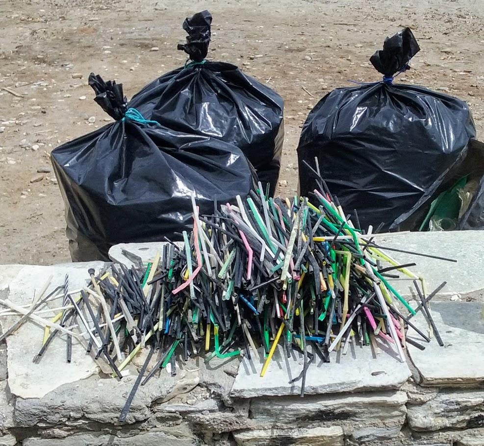 Le Club Ecolo appelle la communauté du LFHED à participer au #Trash Challenge !-1