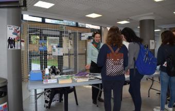 Forum des métiers au LFHED : la vidéo est en ligne !-13