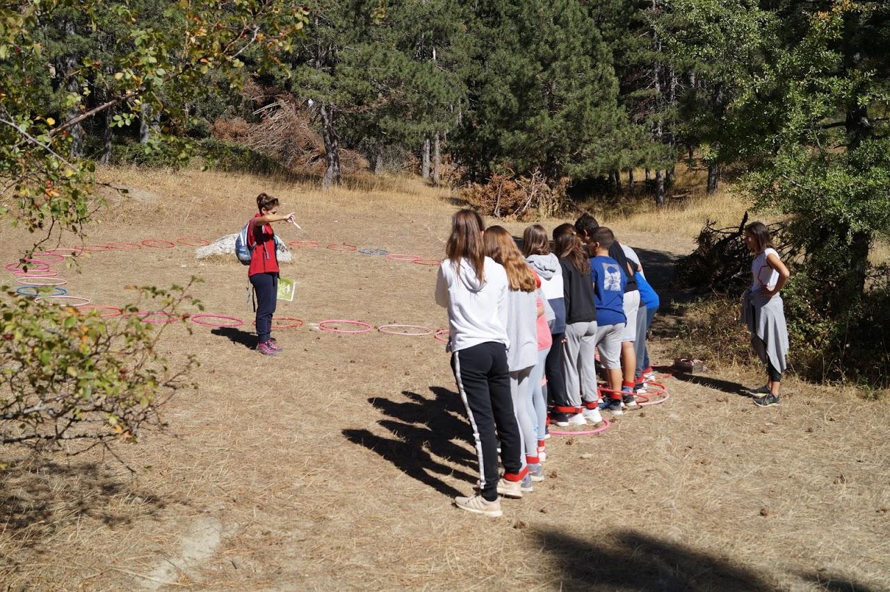 Sortie des élèves de A' Gymnase au parc national de Parnès-1