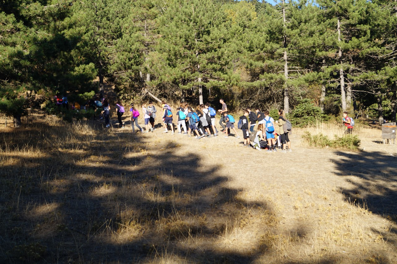 Sortie des élèves de A' Gymnase au parc national de Parnès-0