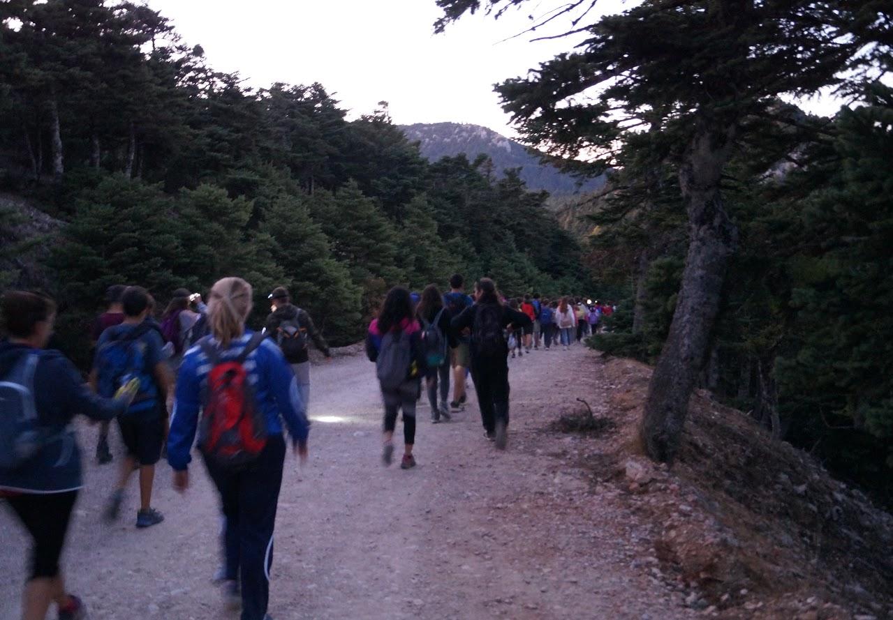 Sortie des élèves de A' Gymnase au parc national de Parnès-6