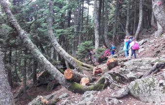 Camp d'automne Toussaint 2016 «Découverte de la montagne»-1