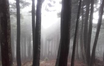Camp d'automne Toussaint 2016 «Découverte de la montagne»-3