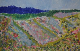 Les paysages vus par nos élèves de 6ème-76