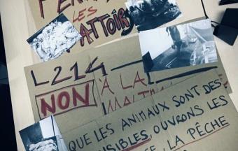 ARC - La Cartographie des Controverses interroge les menus de la cantine-9