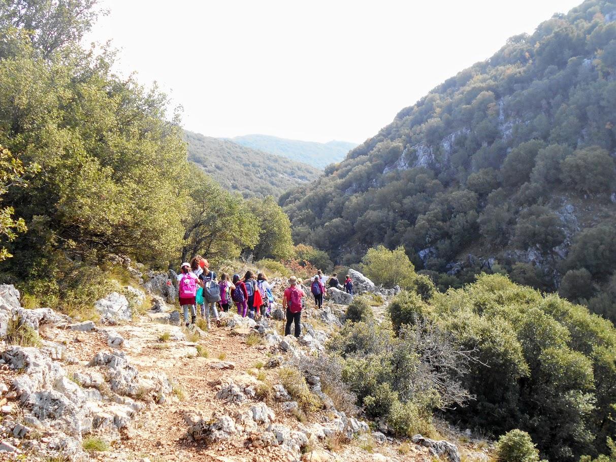 Camps d'automne 2018 : Découverte de la montagne et écotourisme à Karies Lakonias-0