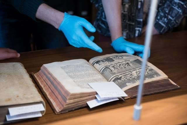 Les 5e latinistes et hellénistes découvrent les métiers de l'archéologie à l'EFA-1